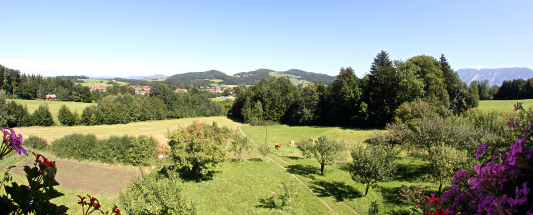 Blick vom Balkon Ferienwohnung Enzian