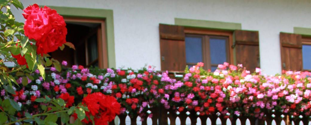 Balkon Ferienwohnung Enzian